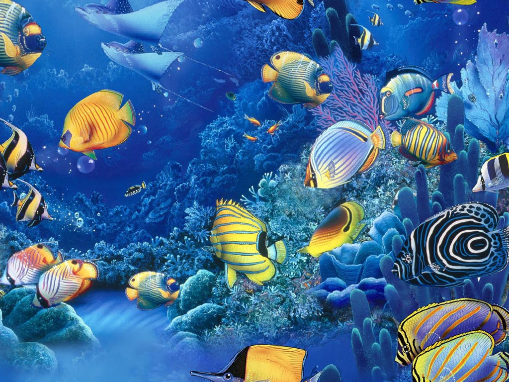 Free Fish Of The Sea Wallpaper Download The - Free Download Wallpaper