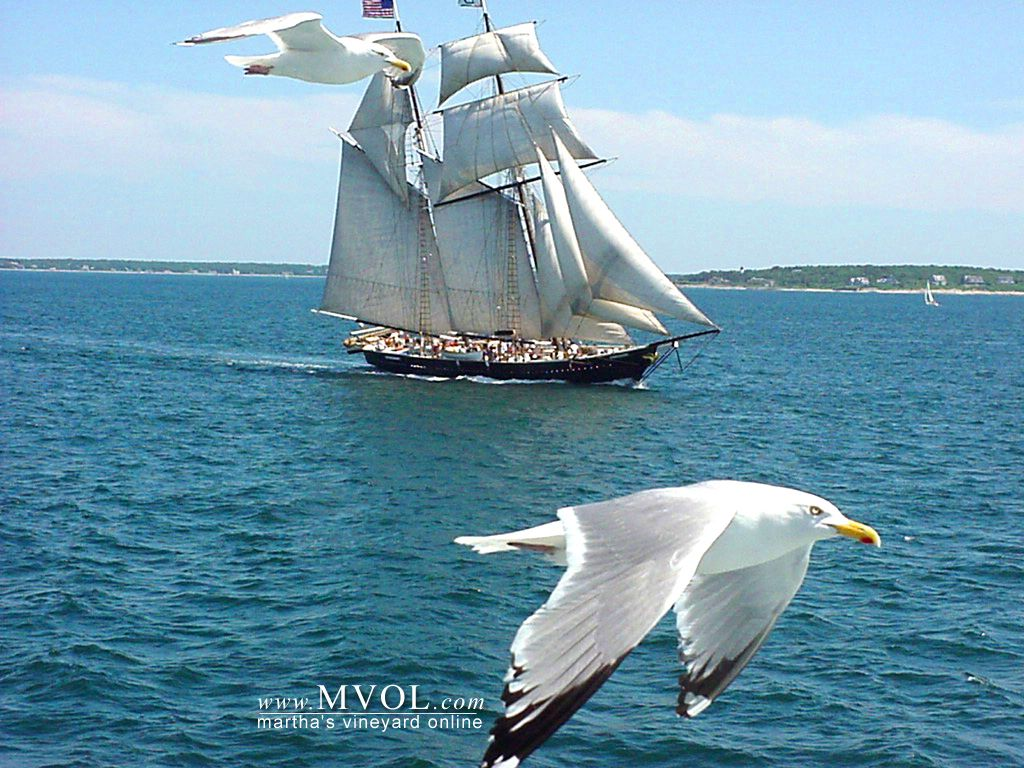 Sailing-Ships-31-6 :: Sailing-Ships :: Wallpapers Gallery Wallpaper