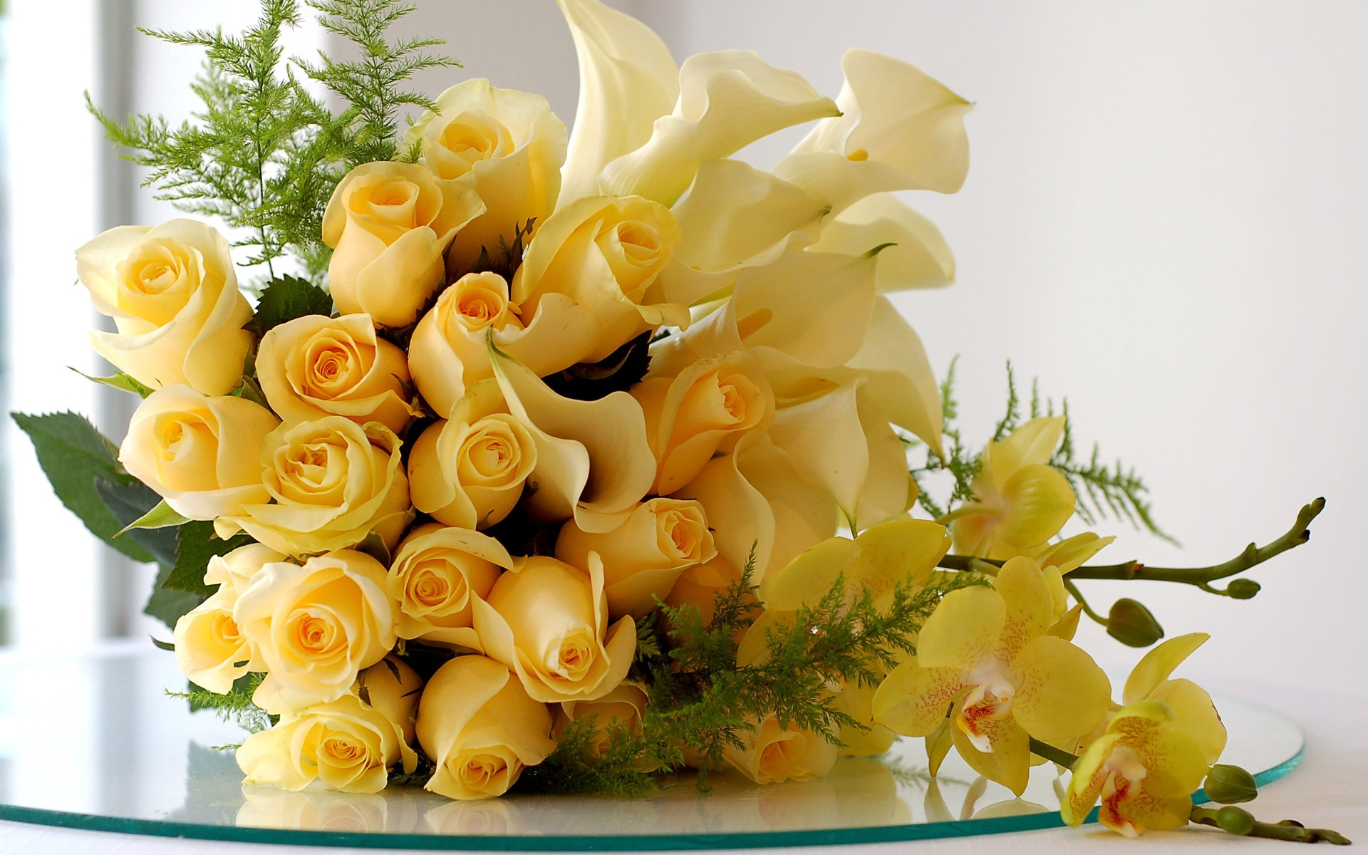 Yellow roses wallpaper Yellow roses wallpaper – Wallpapers Land