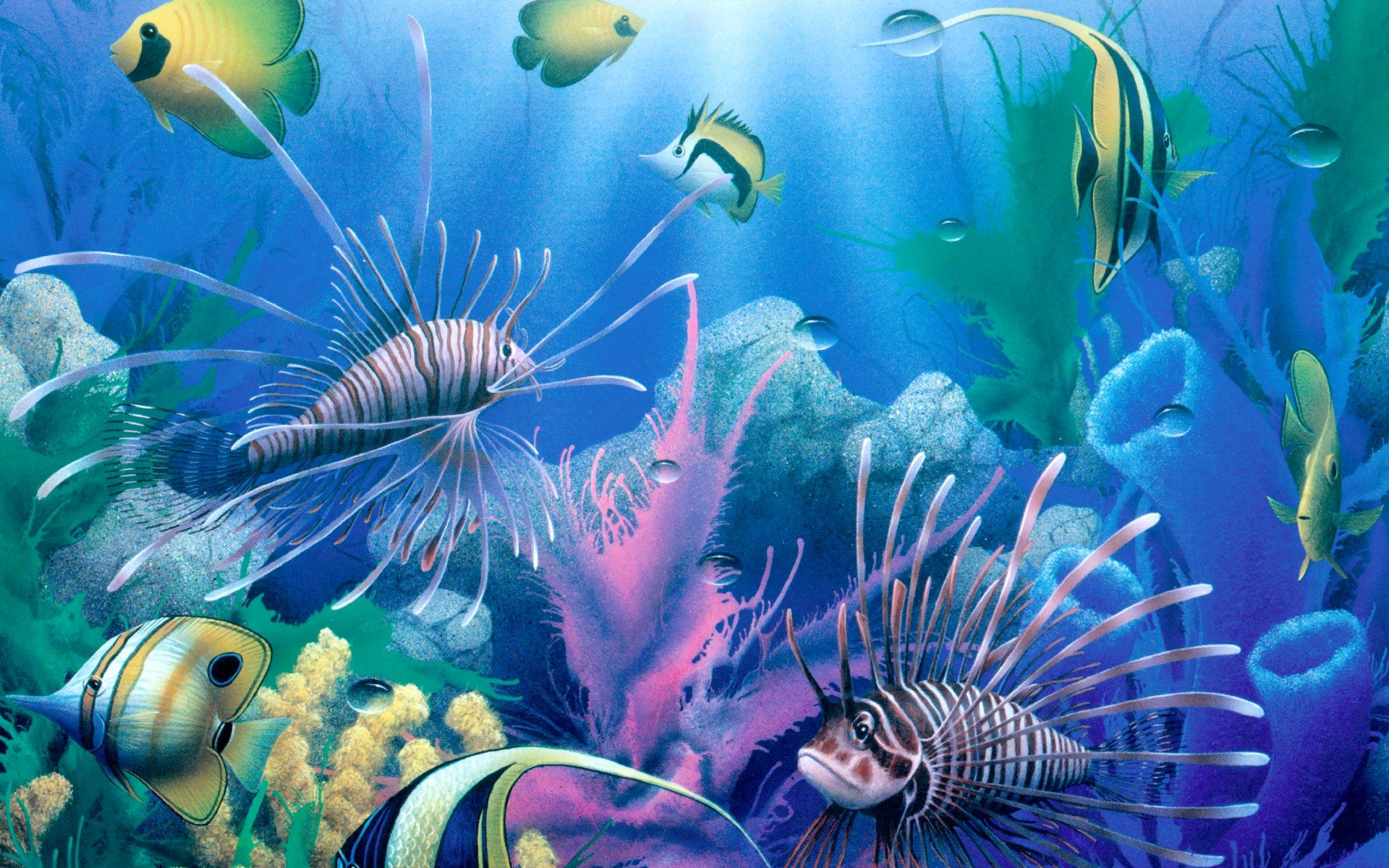 3d animated fish wallpaper images