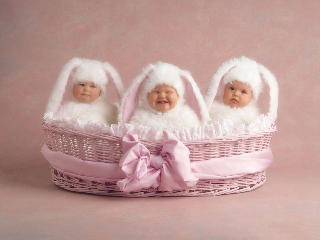 three little pink bunnies in a basket Beautiful Baby Wallpapers