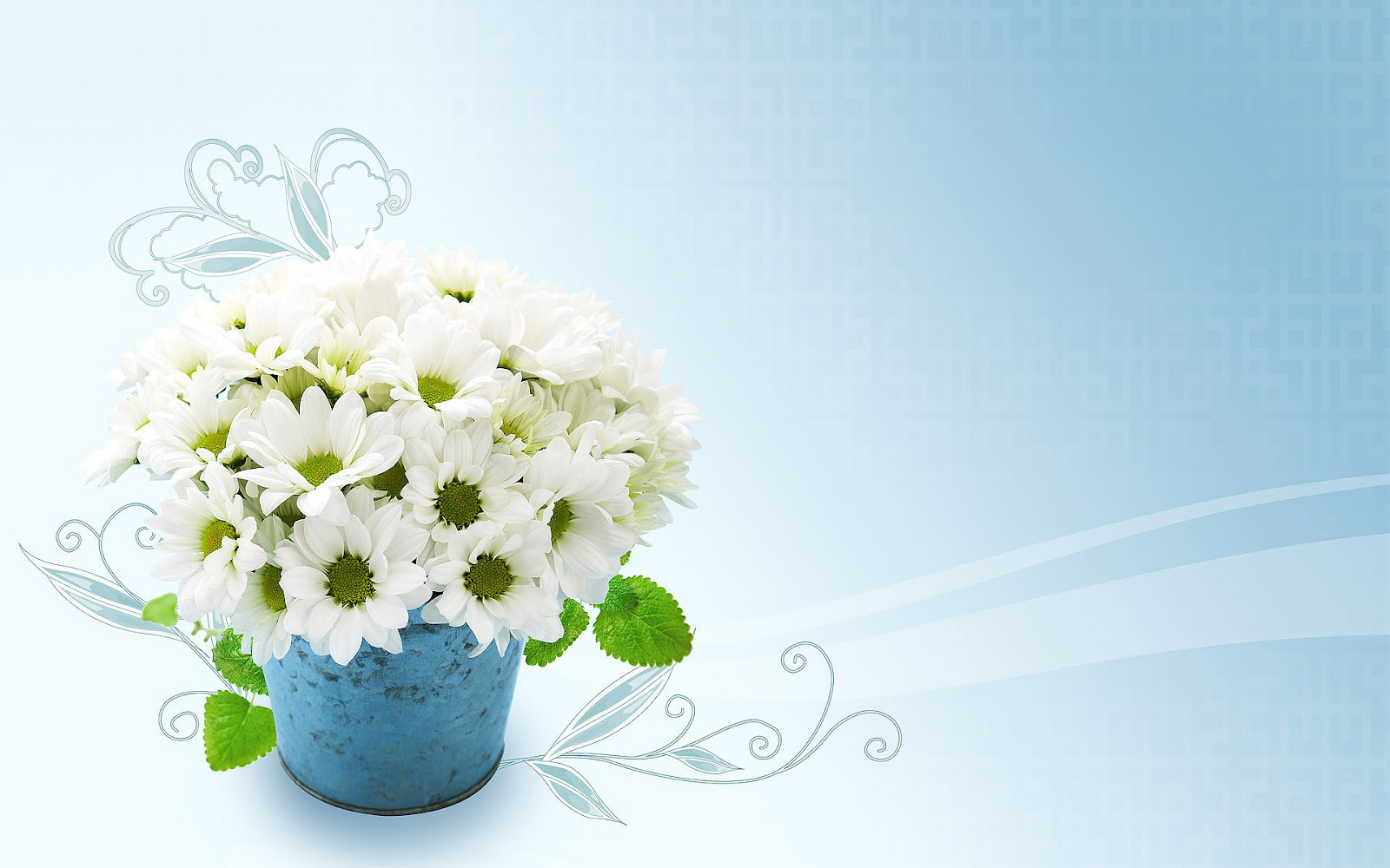 Flowers Wallpapers   Flowers Backgrounds | Top Wallpapers | Free Wallpaper