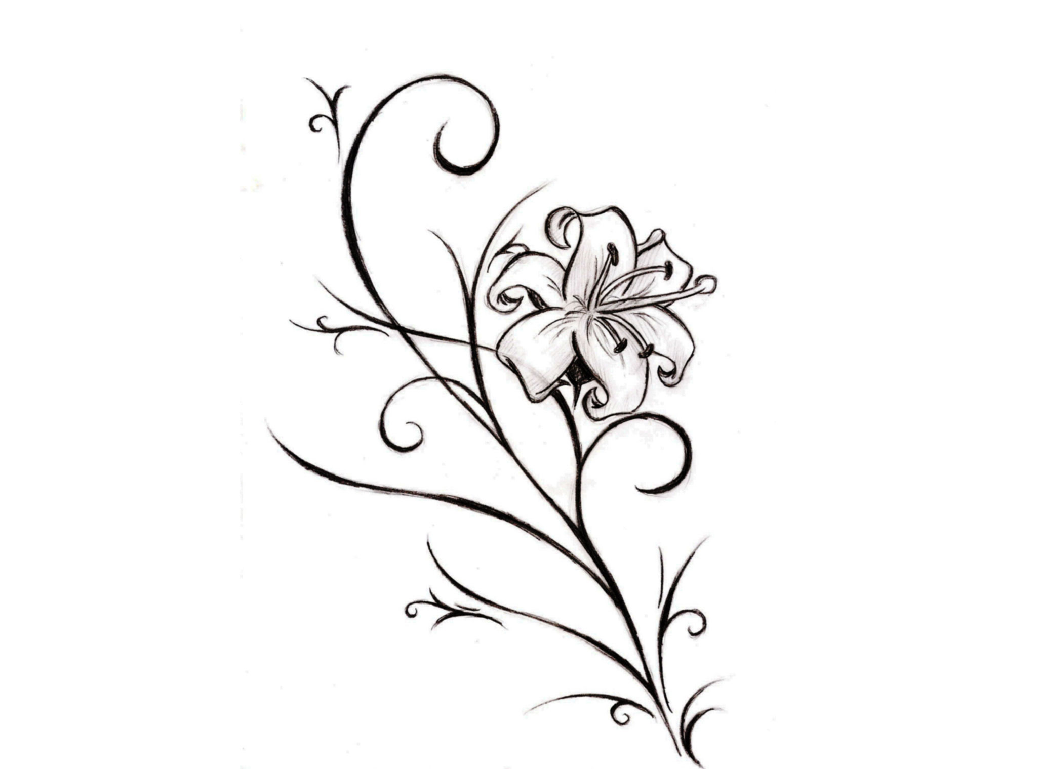Free Designs   Like A Real Lily Flower Tattoo Wallpaper Wallpaper