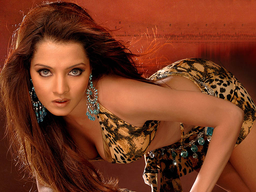 Celina Jaitley Bold Beautiful Wallpapers Celina Jaitley Hot Wallpapers Wallpaper