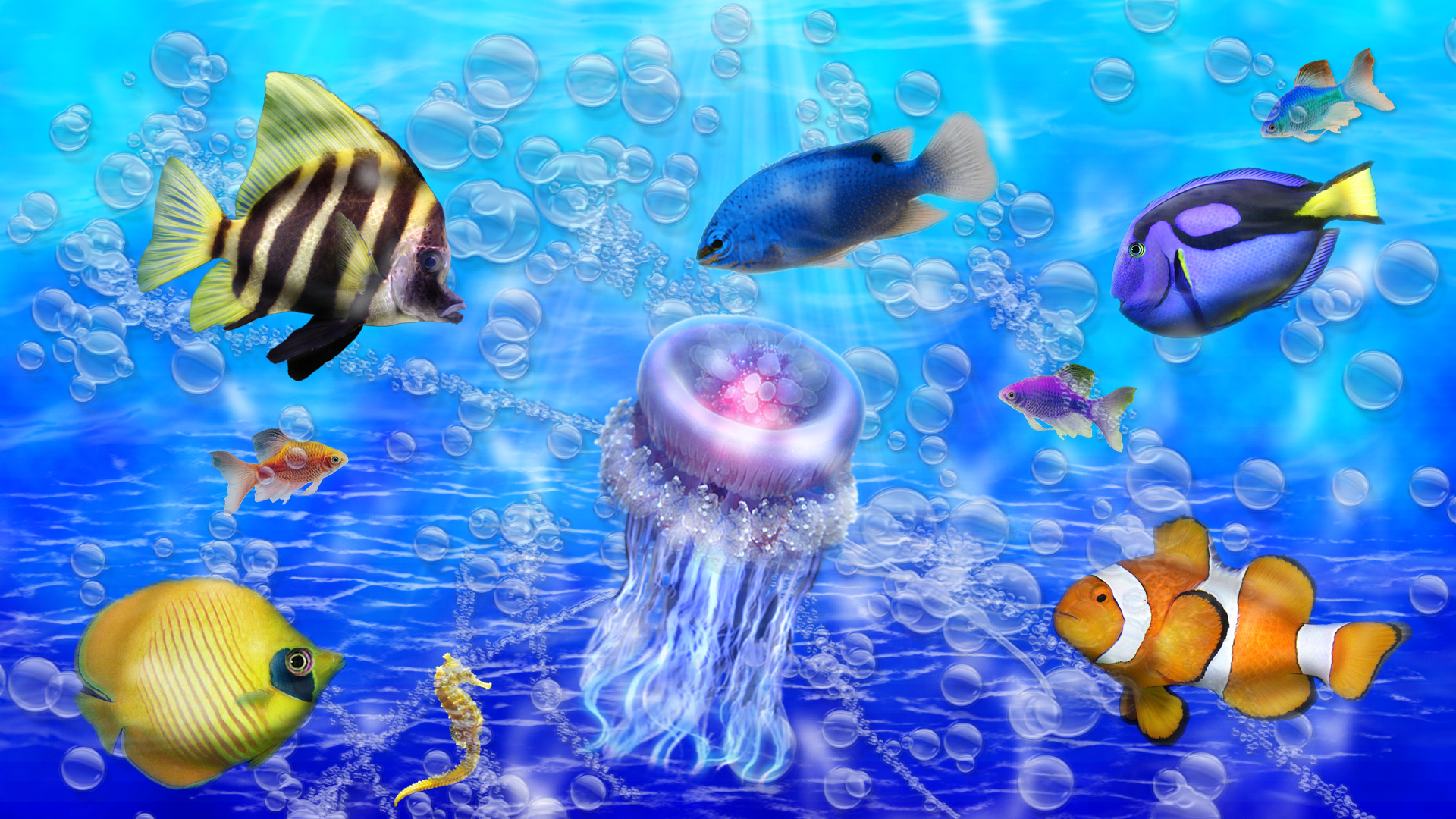 Ocean In Color, Beautiful, Colorful, Fish, Jelly Fish, Ocean, Water Wallpaper