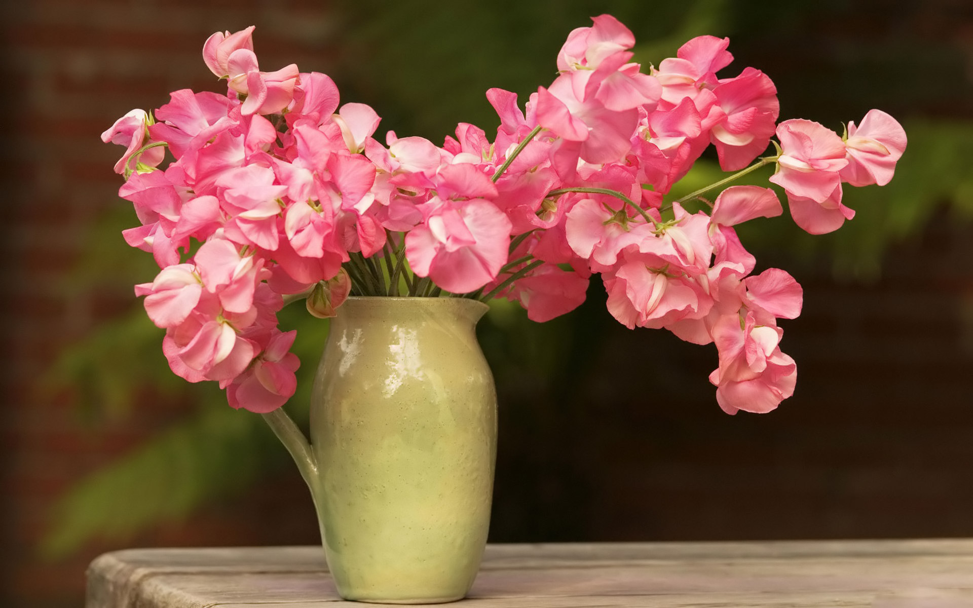 Bouquet Of Delicate Pink Flowers Background Image Hd Wallpaper Wallpaper