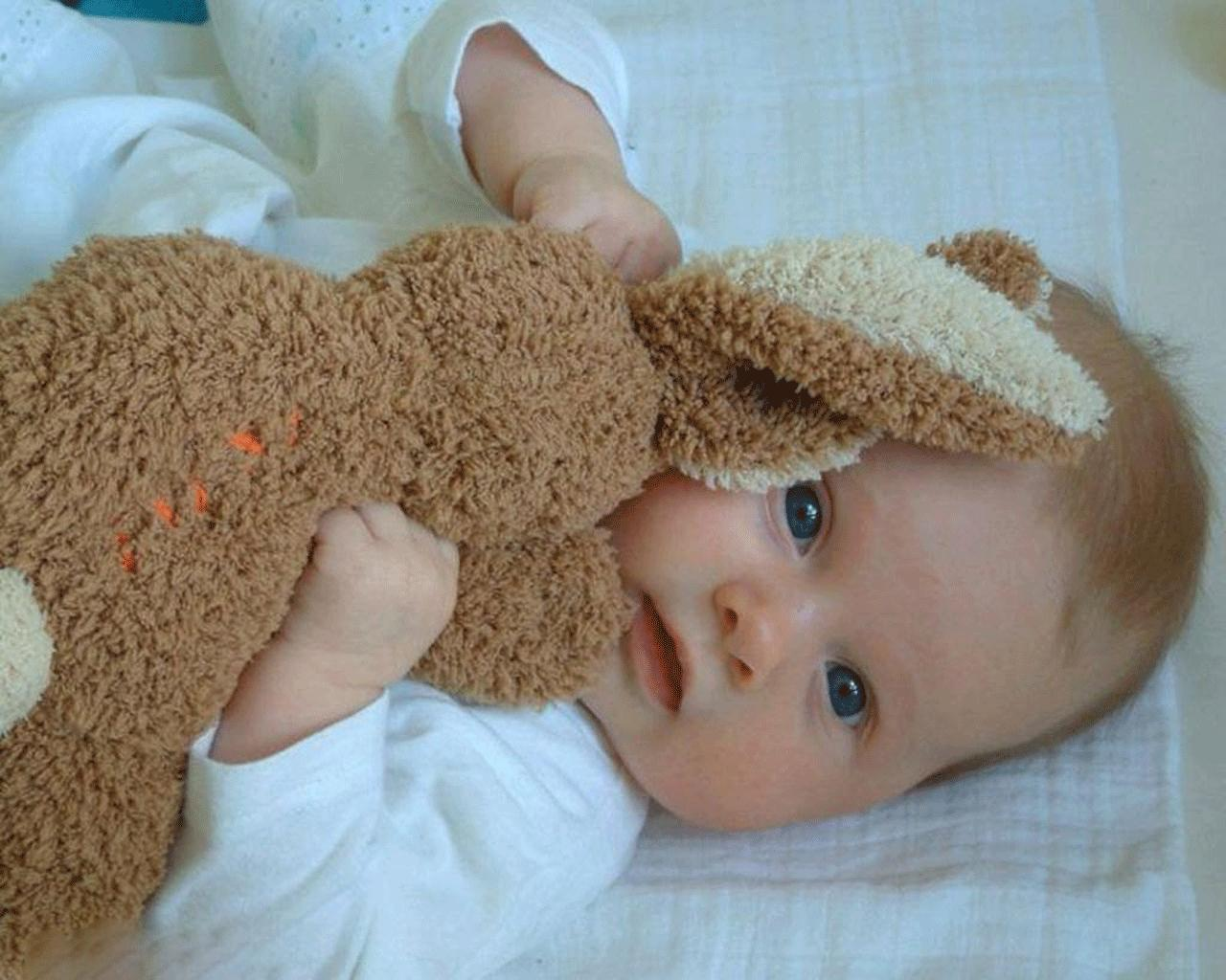 Free Wallpaper Of Baby A Cute Baby Holding A Teddy Bear Click To Wallpaper