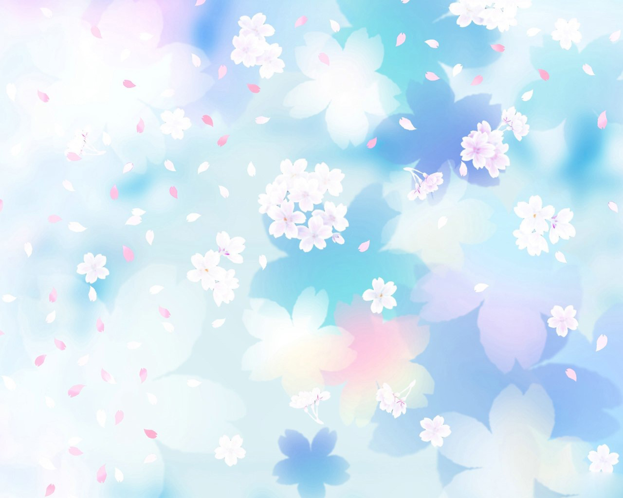 Daisy-Flowers-Wallpaper-45