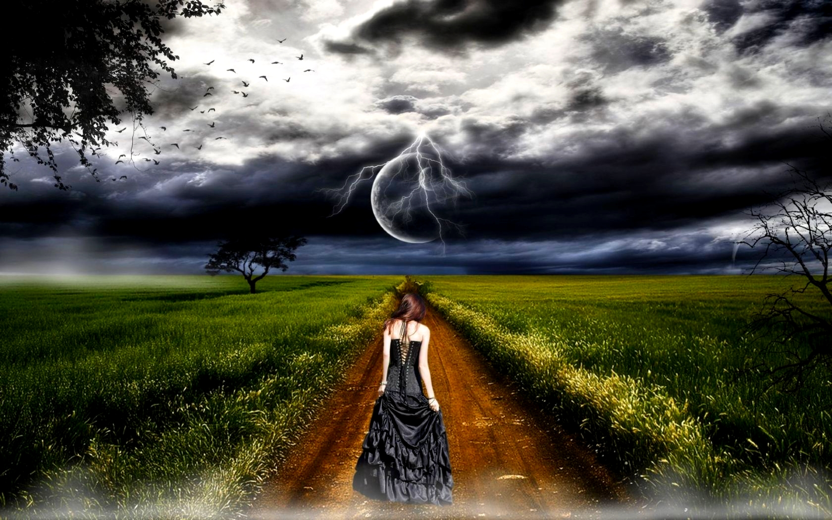 THIS LONG ROAD I TRAVEL, Birds, Blackdress, Clouds, Dark, Field, Fog Wallpaper