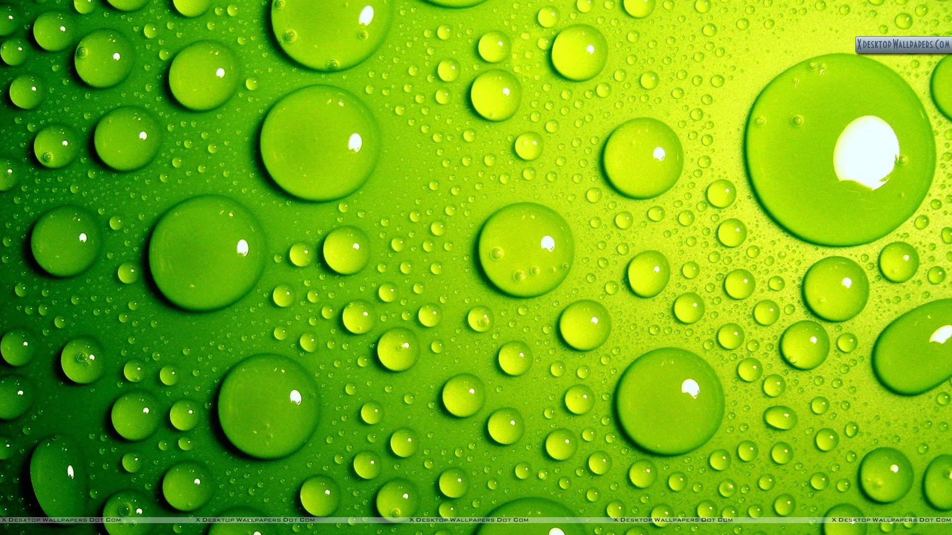 Green Bubbles Awesome Background Wallpaper Wallpaper