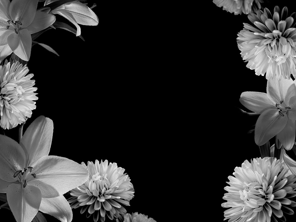 Black And White Design Background Black White Flowers Design 1