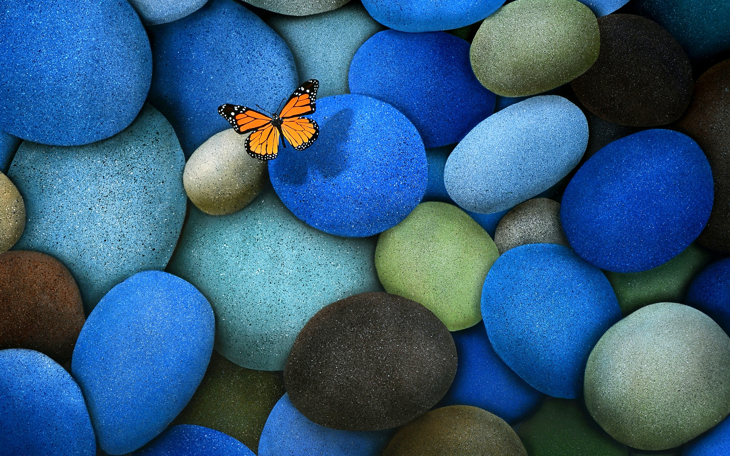 Butterfly On Blue Stones