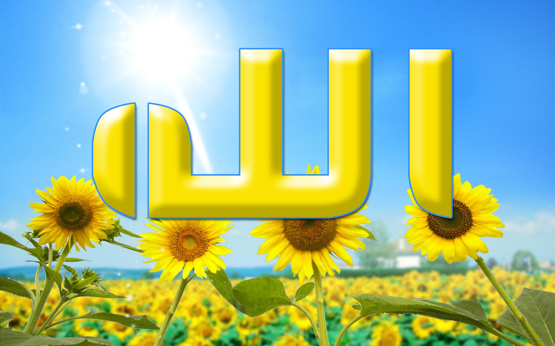 Allah Name And Sun Flowers 750×468 Allah Name And Sun Flowers Wallpaper