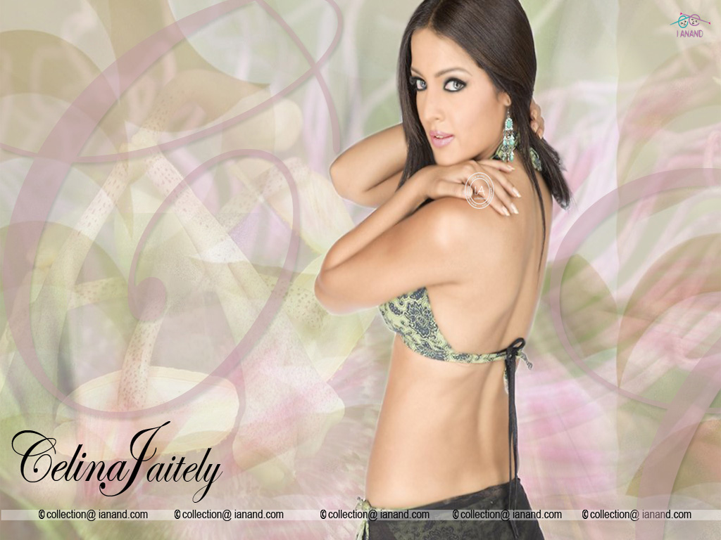 Celina Jaitley Hot Wallpaper Wallpaper