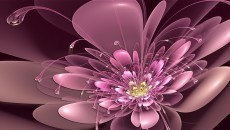 abstract-wallpaper-pics-of-love-flowers-102