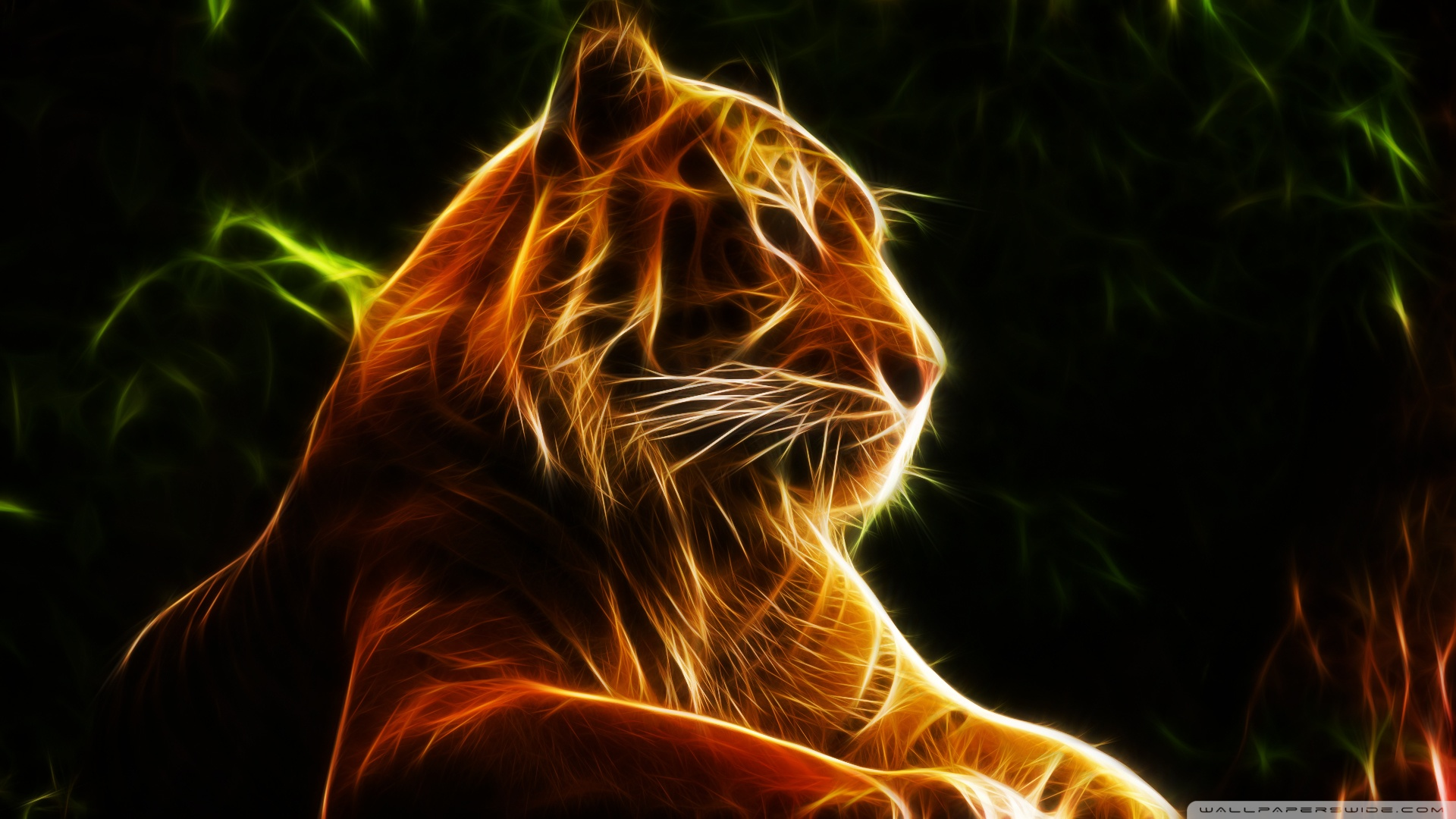 Abstract Wallpaper White Tigers Wallpaper