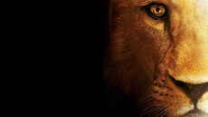 mac-os-x-lion-ps3-desktop-wallpaper-1080p-135