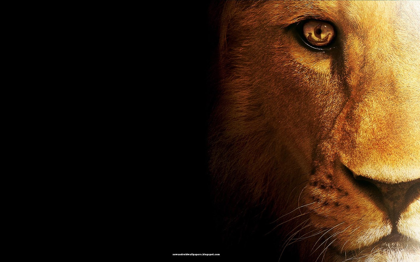 Mac Os X Lion Ps3 Desktop Wallpaper 1080p Wallpaper