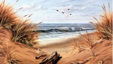 beach-scenes-screensavers-10