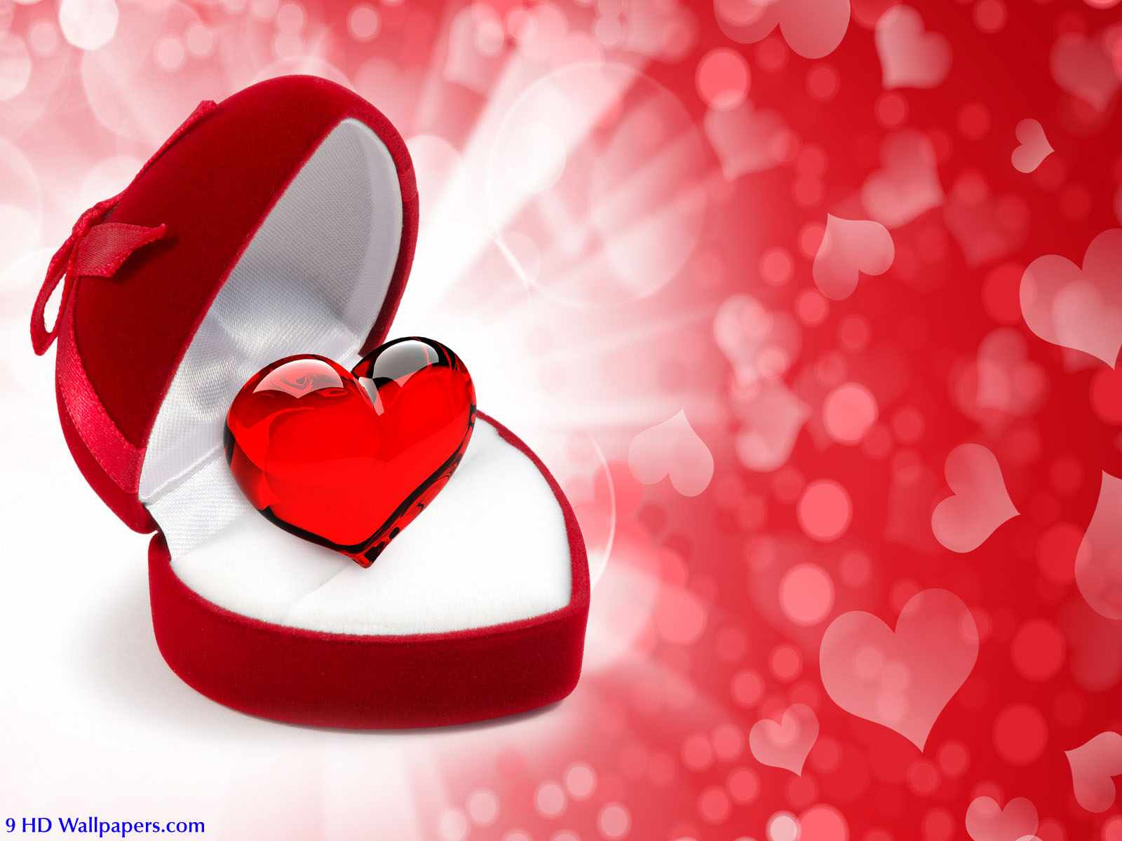 Valentines Greetings Messages Wallpaper