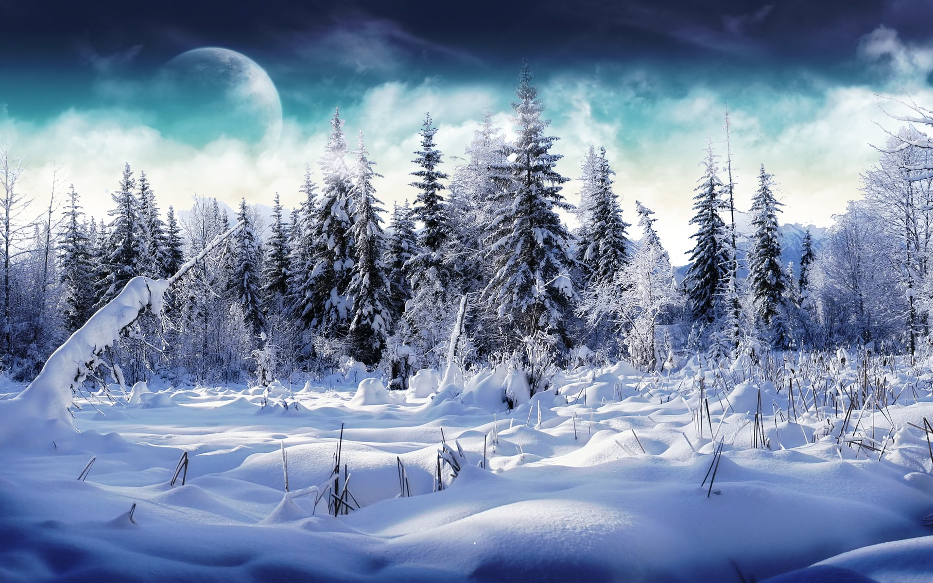 Winter Background Images Wallpaper