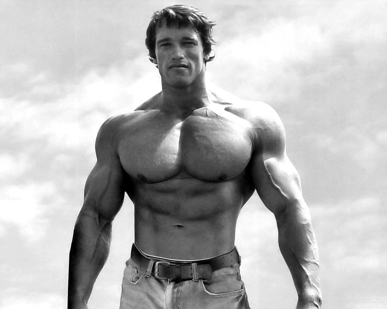 Arnold Schwarzenegger HD Wallpaper Bodybuilder