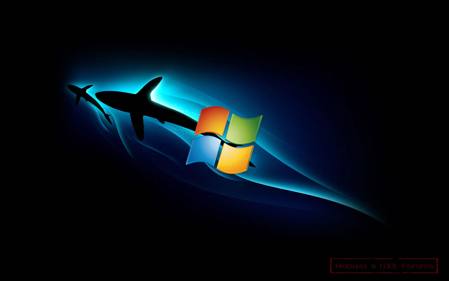 Windows 8 HD Wallpaper Dolphin Wallpaper