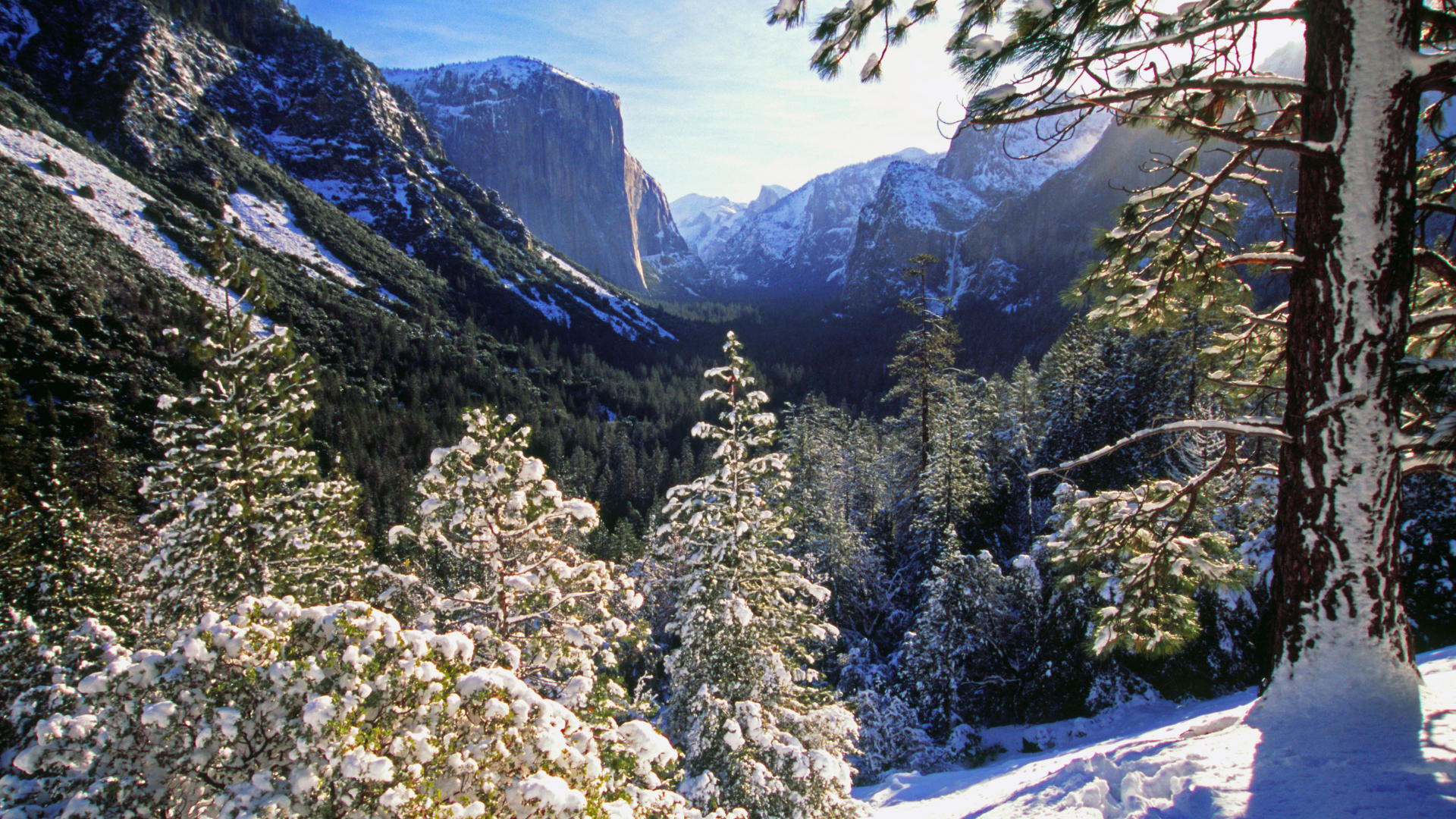 El Capitan Winter Wallpaper Wallpaper