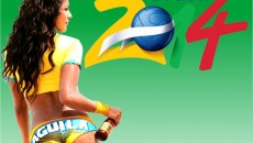 FIFA World Cup 2014 Brazil wallpaper