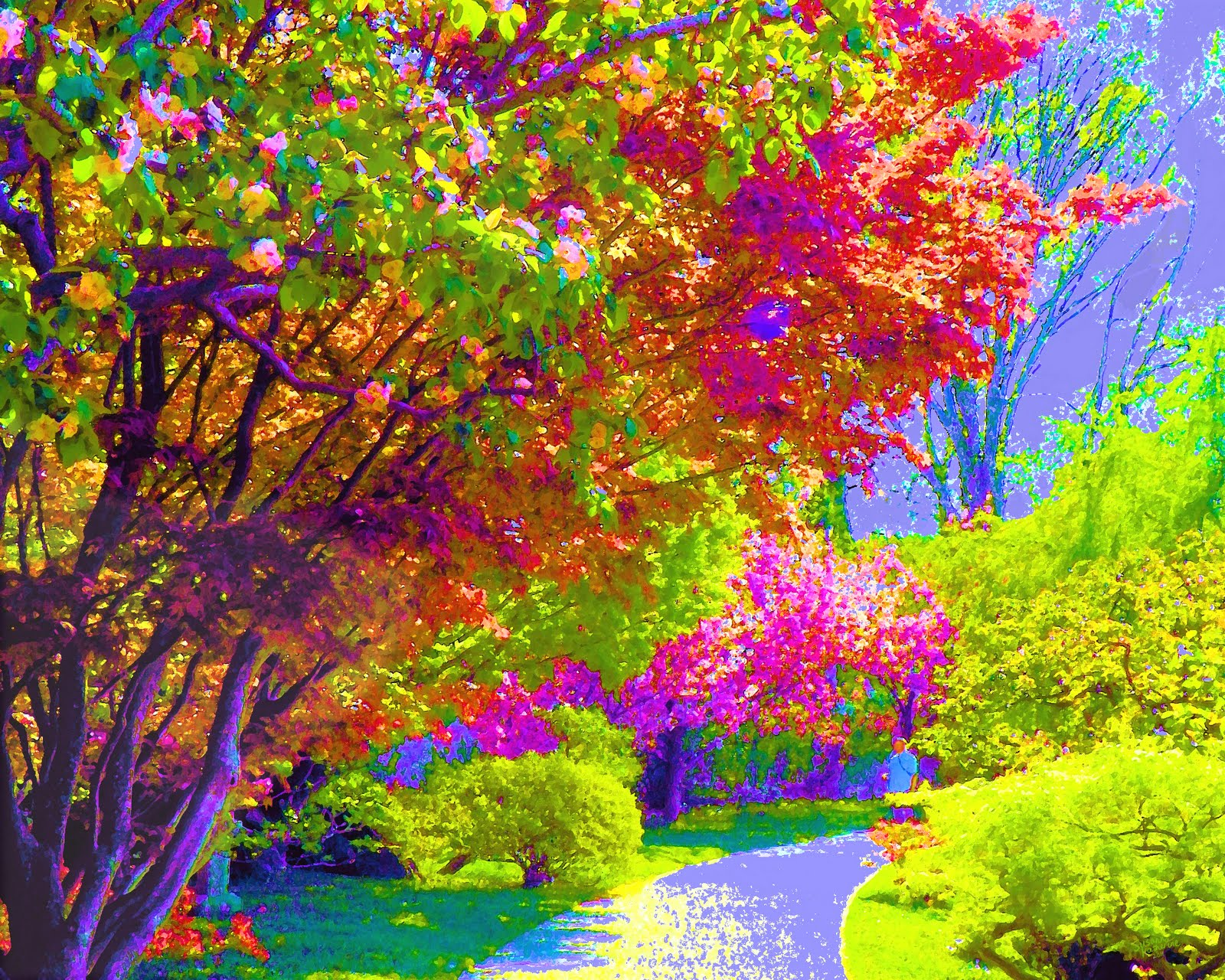 Painting Of Colorful Trees – Wallpaper – 1600 x 1280 Wallpaper Wallpaper