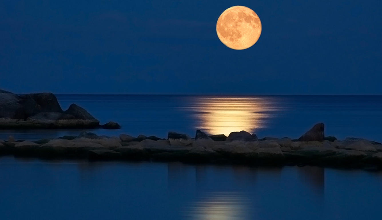 Romantic Moon Wallpaper Wallpaper