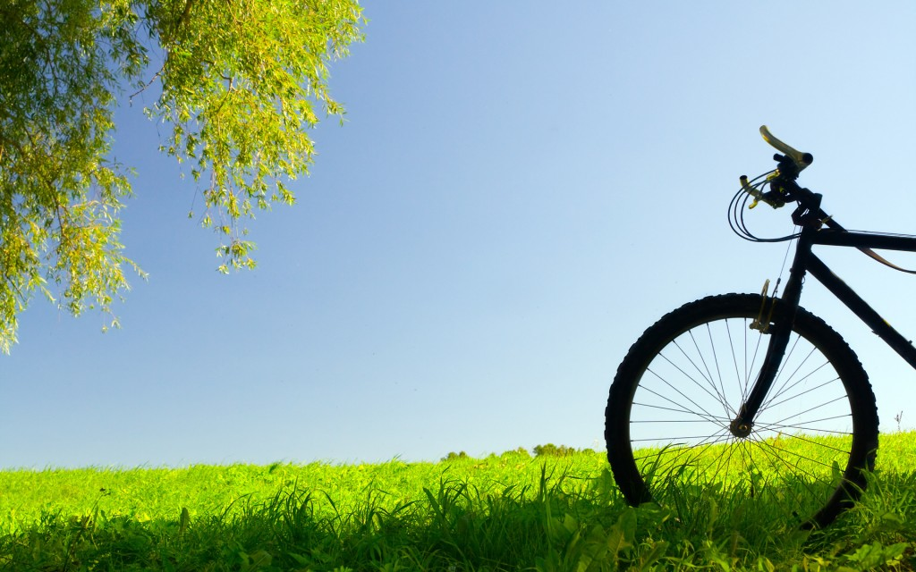Vehicles - Bicycle Wallpaper