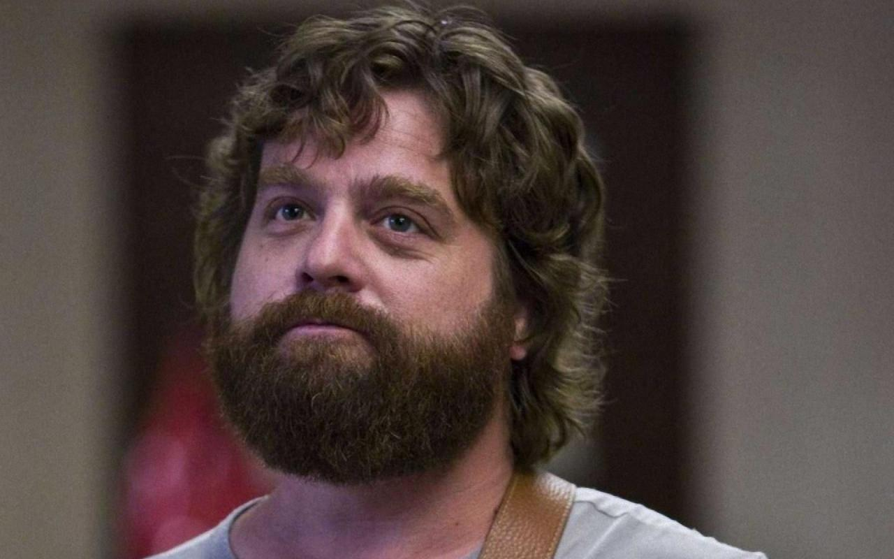 Zach Galifianakis Celebrity Wallpaper HD Wallpaper