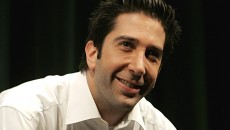 david schwimmer background