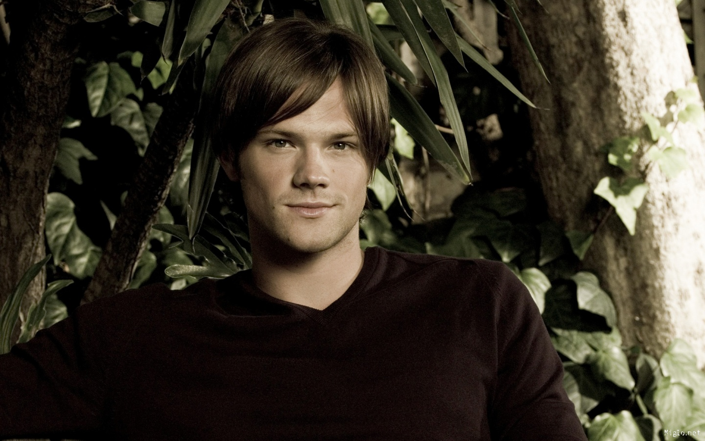 Good Quality Jared Padalecki HD Wallpaper Wallpaper