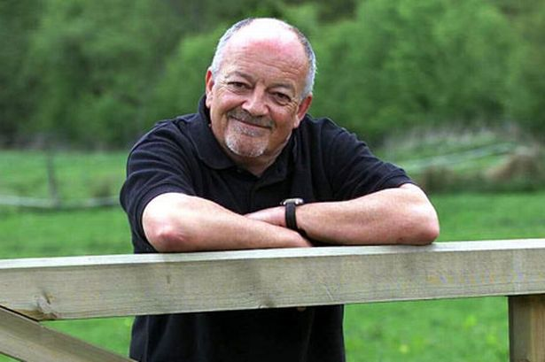 Good Quality Tim Healy HD Wallpaper Wallpaper
