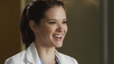 sarah-drew-greys-anatomy-april-kepner.jpg