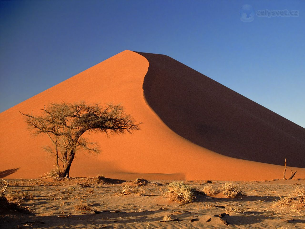 Good Quality Namib Desert HD Wallpaper Wallpaper