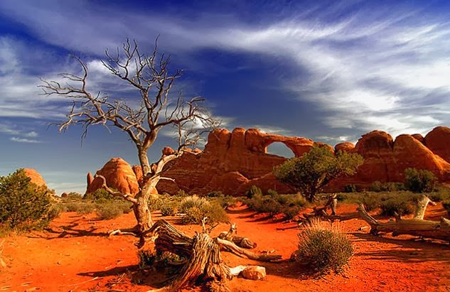 New Great Victoria Desert HD Wallpaper Wallpaper