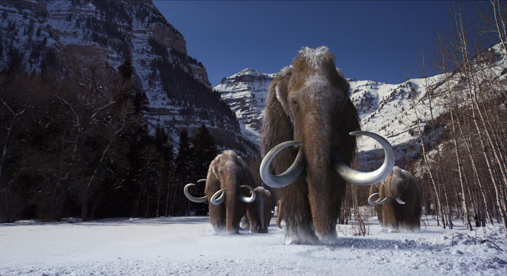 Woolly Mammoth HD Wallpaper Download Wallpaper