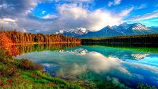Beautiful Scenery Wallpapers HD Pictures | One HD Wallpaper Pictures